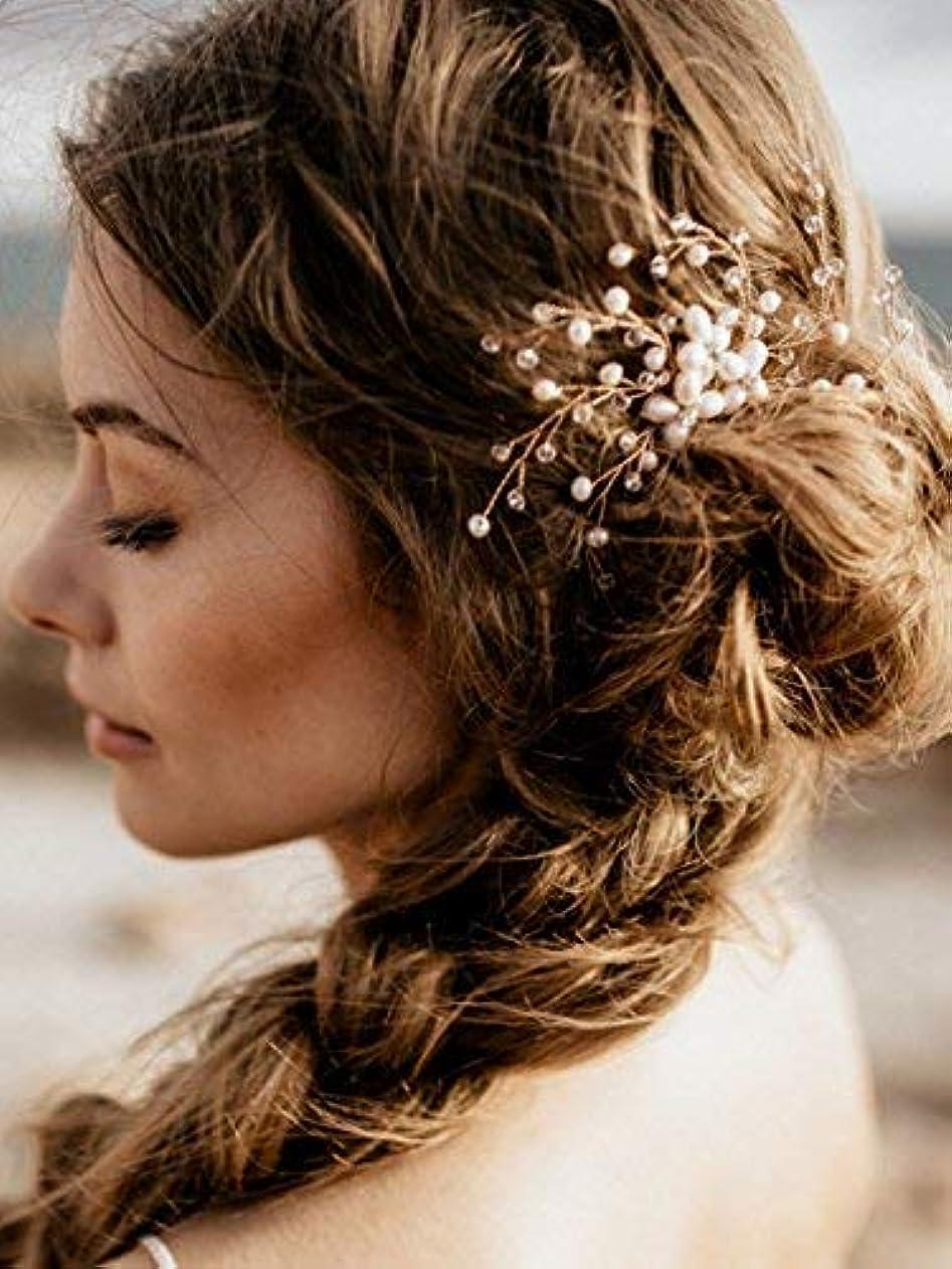 黒くする地平線ロマンチックFXmimior Vintage Bridal Women Vintage Wedding Party Hair Comb Crystal Vine Hair Accessories [並行輸入品]