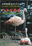 一本足柔道―Flamingo‐Style Judo (知柔会講話 (第4集))
