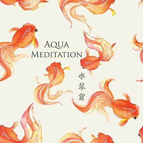 涼やかで神秘的な水琴窟の癒し ~ Aqua Meditati...