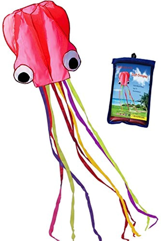 HENGDA Kite (ヘングダカイト) 子供用たこの凧幅31インチの長さ157インチの長さの凧です。ビーチや公園での凧揚げにぴったりです。 HD