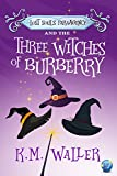 BURBERRY Lost Souls ParaAgency and the Three Witches of Burberry: (Romantic Paranormal Mystery) (English Edition)