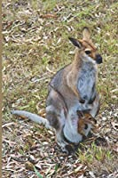 Wallaby Blank Lined Notebook Journal: A notebook or daily diary for Wallaby lovers!!!