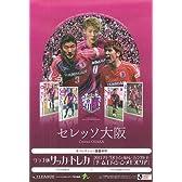 2013 Jリーグチームエディションメモラビリア セレッソ大阪 BOX
