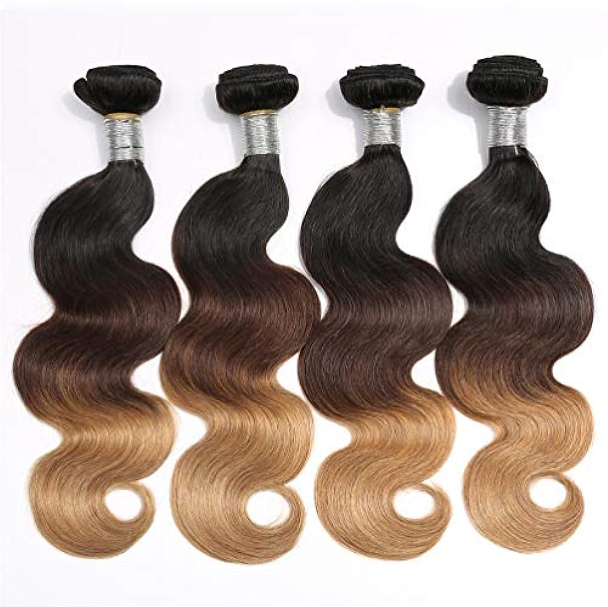 貝殻資格炭素女性150%密度ブラジル髪の束実体波1バンドル髪の束実体波人間の髪の毛のグラデーション
