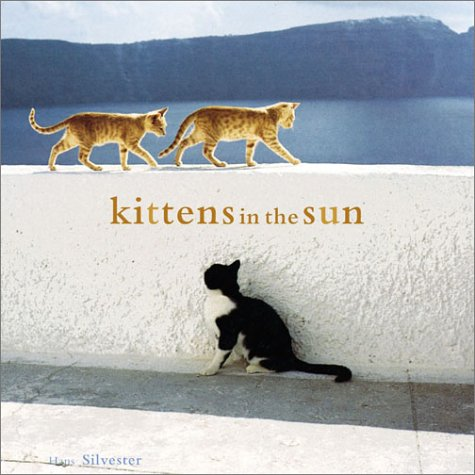 Kittens in the Sunの詳細を見る