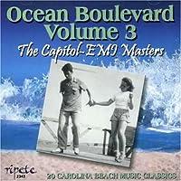 Ocean Boulevard 3