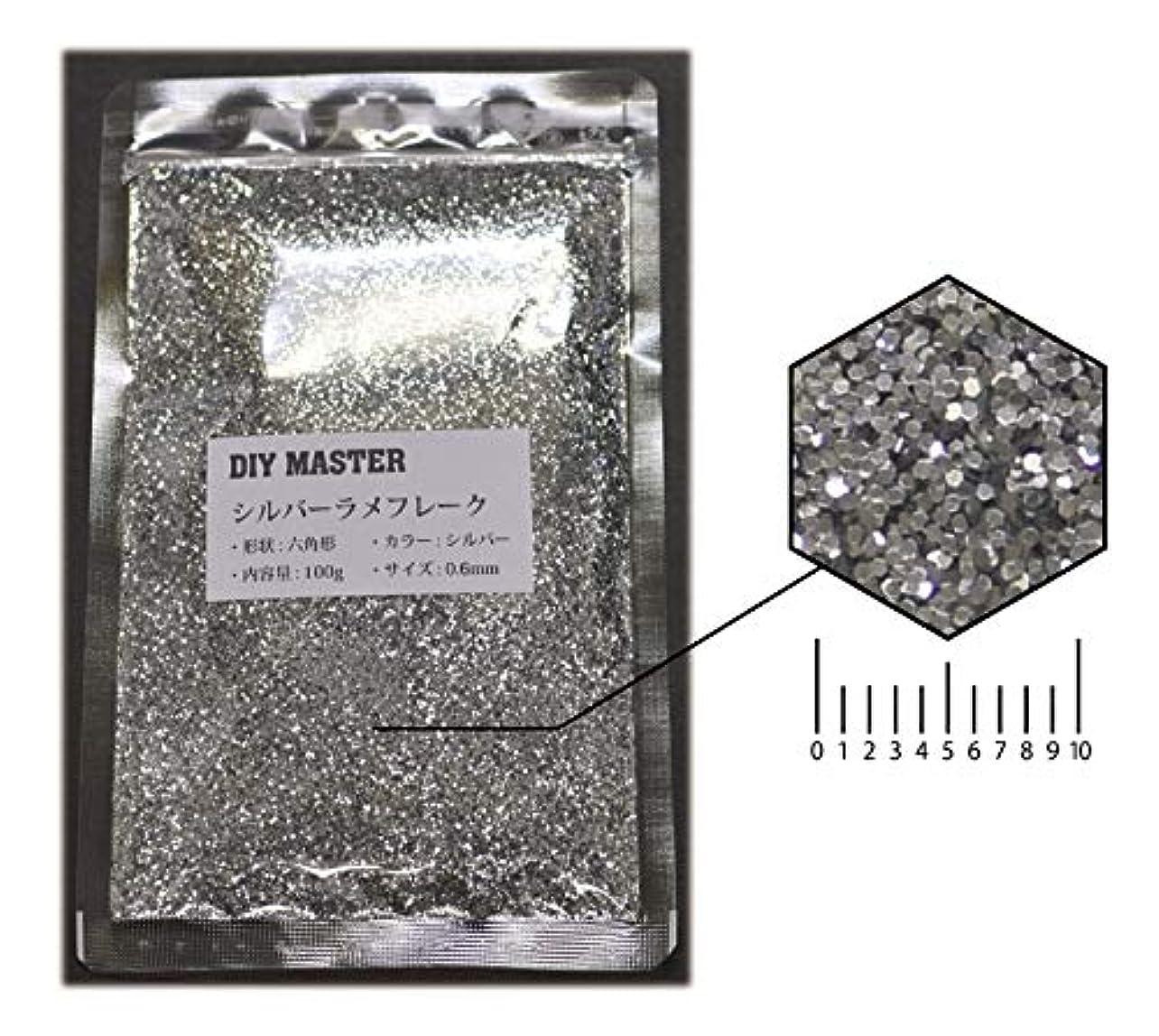 ディーラーみなさん印象的DIY MASTER シルバー ラメフレーク 0.6mm 100g