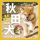 むくむくもふもふ 秋田犬 カレンダー 2019 (翔泳社カレンダー)