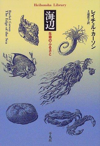 海辺 (平凡社ライブラリー)