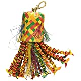 Planet Pleasures Octopus Pinata Bird Toy