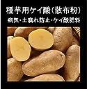 【防カビ珪酸】じゃが芋灰(種いも灰)(500g ジャガイモ15kg)(100%珪酸分は シリカゲル肥料だけタネイモの失敗しない病予発芽促進