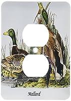 3drose LSP 114097_ 6Mallard Duck byジョン・ジェームズ・オーデュボン2プラグコンセントカバー