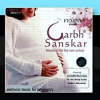Garbh Sanskar by Various