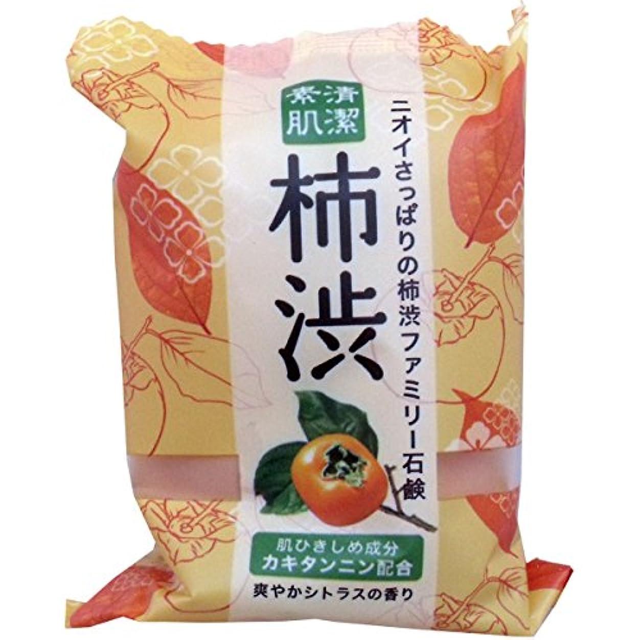 冷淡なピンポイント鼓舞するペリカン石鹸 ファミリー柿渋石鹸(1個) ×2セット