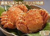 毛ガニ 北海道産 約630g×2尾 (計1.26kg前後) 大型 ボイル 冷凍 極上堅蟹 毛蟹