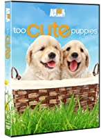 Too Cute Puppies [DVD] [Import]