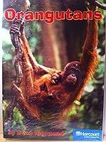 Orangutans of the Forest, On-level Reader Grade 2: Harcourt School Publishers Storytown (Rdg Prgm 08/09/10 Wt)