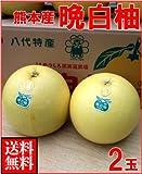 南国フルーツ 熊本県八代産 晩白柚(ばんぺいゆ)2玉