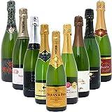 本格シャンパン製法の極上の泡9本セット((W0S901SE))(750mlx9本ワインセット)