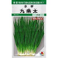 【種子】ネギ九条太 野菜 タキイのタネ