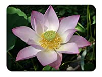 ピンクの白い蓮の花のクローズアップ パターンカスタムの マウスパッド 植物・花 (26cmx21cm)