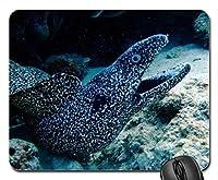 自然景観ゲームマウスパッド、海洋黒ネズミマウスパッド、マウスパッド(魚マウスパッド)