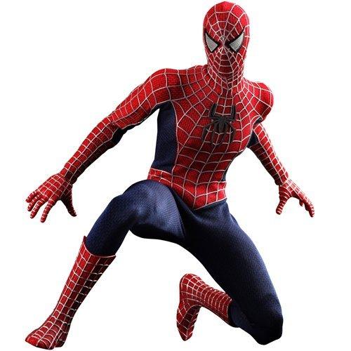 Spiderman 3 Hot Toys Movie Masterpiece 1/6 Scale Collectible Figure Spiderman [병행수입품]-