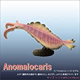 Amazon.co.jpFAVORITE (フェバリット) 古生物フィギュア プレヒストリックライフ ソフトモデル アノマロカリス