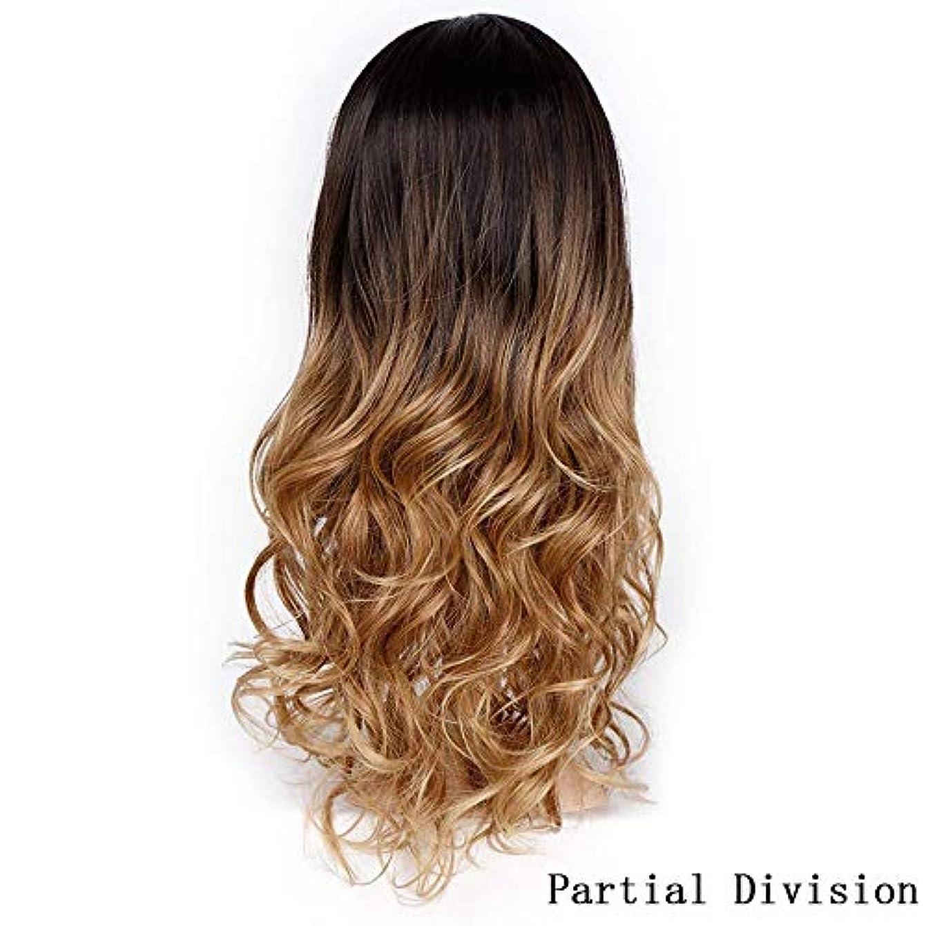 に沿ってウェイター執着美しく 女性グルーレスコスプレ耐熱パーティーウィッグ激しくロングオンブルブラウンブロンド波状のかつら自然な髪の分け目合成ウィッグ (Color : R3 30 27, Stretched Length : 24inches)