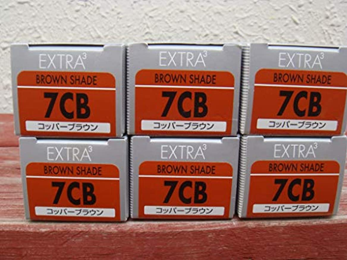 コンピューターを使用する存在パスポートカラーアクシス エクストラキュービック 7CB