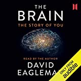 The Brain: The Story of You 画像