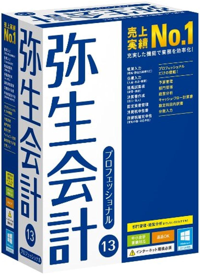 承認するオーナー主人【旧商品】弥生会計 13 プロフェッショナル