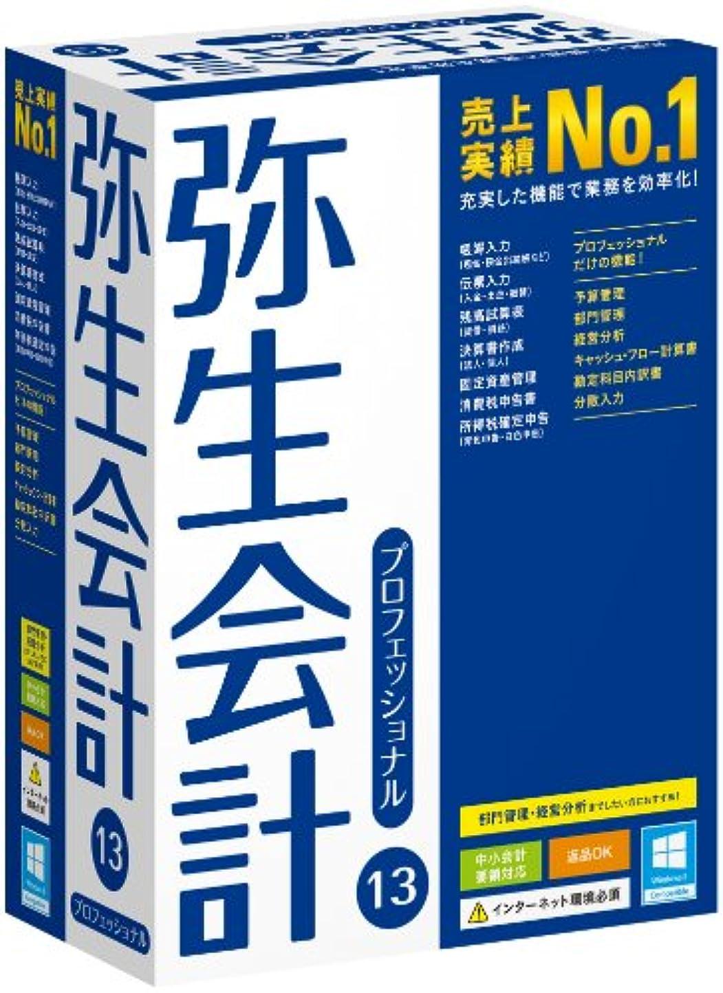 オンス特異なリンケージ【旧商品】弥生会計 13 プロフェッショナル