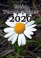 """Mein Terminplaner 2020: Terminplaner 2020   Wochenplaner A4   Hochformat   Dezember 2019 - Januar 2021   Tage untereinander   Tagebuch geeignet   Hochglanzcover """"Margeriten"""""""
