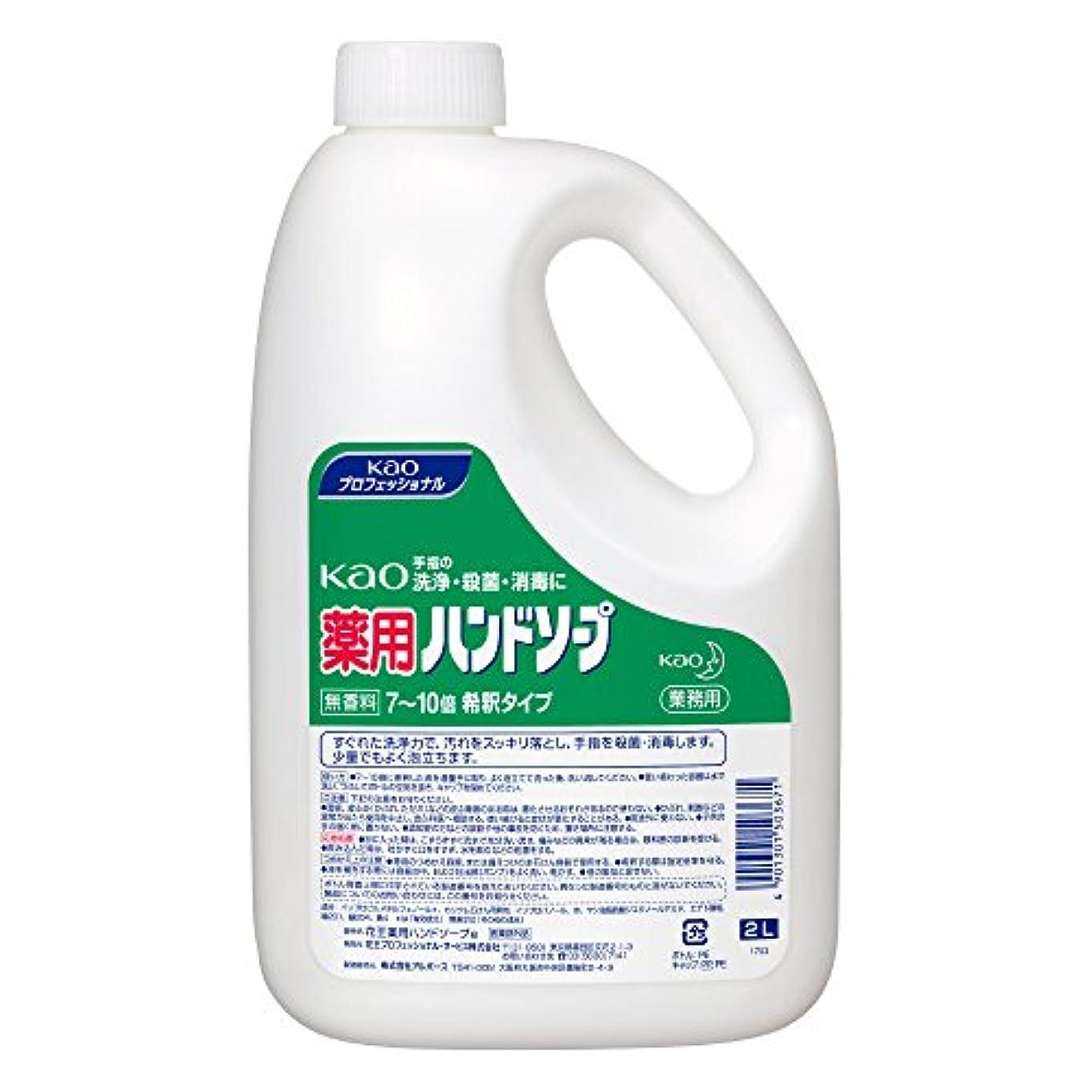 削る洗う味【業務用 ハンドソープ】Kao 薬用 ハンドソープ 2L(花王プロフェッショナルシリーズ)