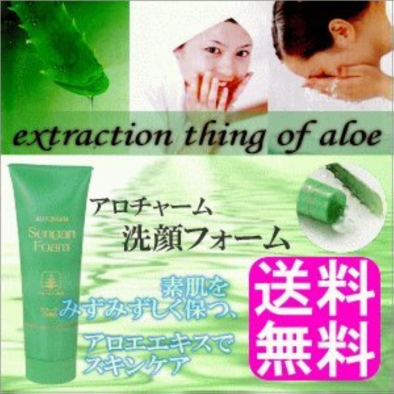 反応するぼかす高めるアロチャーム 洗顔フォーム