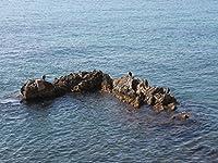 Lais Puzzle 海の岩 200 部