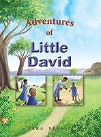 Adventures of Little David (Bible Adventures)