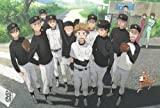 おおきく振りかぶって Vol.9【最終巻】 [DVD]