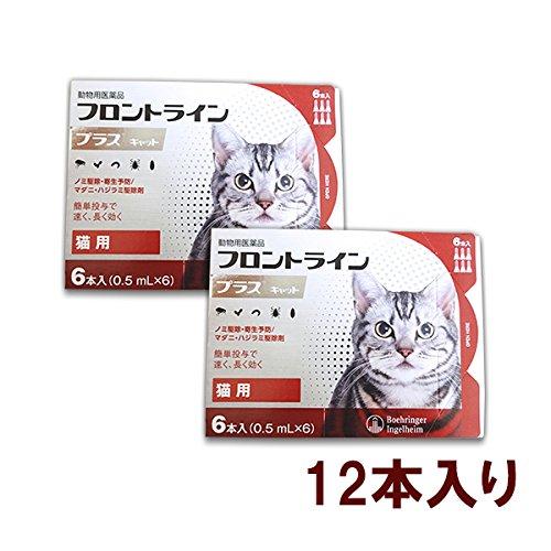 【2箱セット】猫用フロントラインプラスキャット 6本(6ピペット)(動物用医薬品...