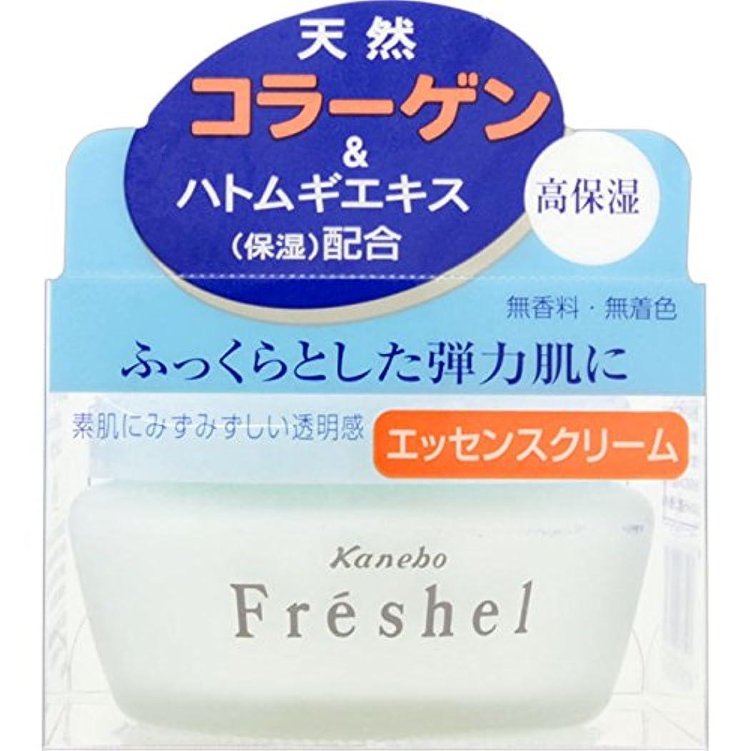 お酢くしゃみスキップカネボウ フレッシェル エッセンスクリームNA 50g