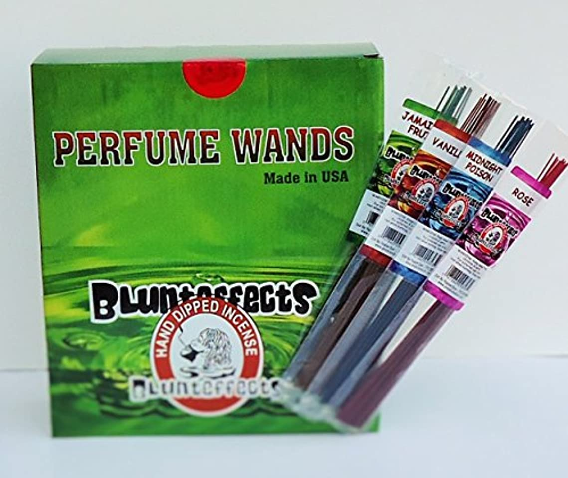 落ち着く貧困グループBlunteffects hand-dipped Incense表示72 Count