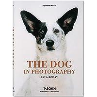 The Dog in Photography / Der Hund In Der Fotografie / Le Chien Dans La Photographie: 1839-today