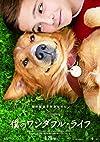 僕のワンダフル・ライフ【DVD化お知らせメール】 [Blu-ray]