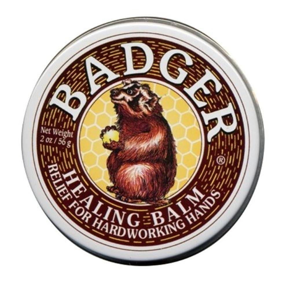 中断海外で周辺Badger バジャー ヒーリングバーム【大サイズ】 56g【海外直送品】【並行輸入品】