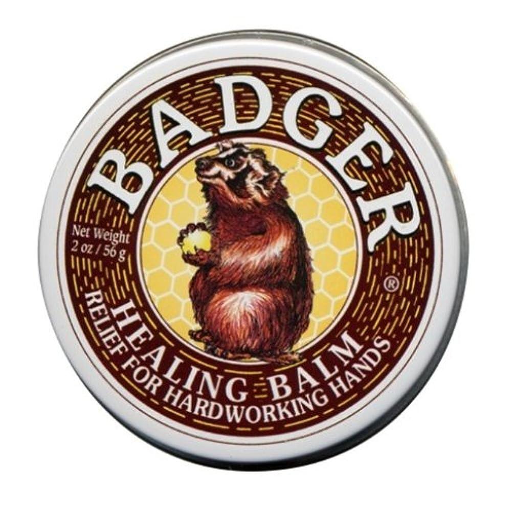 額修復公平Badger バジャー ヒーリングバーム【大サイズ】 56g【海外直送品】【並行輸入品】