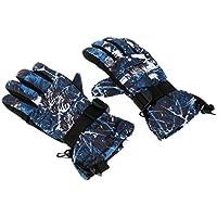 SONONIA 冬 暖かい 防水 防風 スノーボード スキー スポーツ手袋 恋人同士 アウトドアスキーグローブ 全4色4サイズ