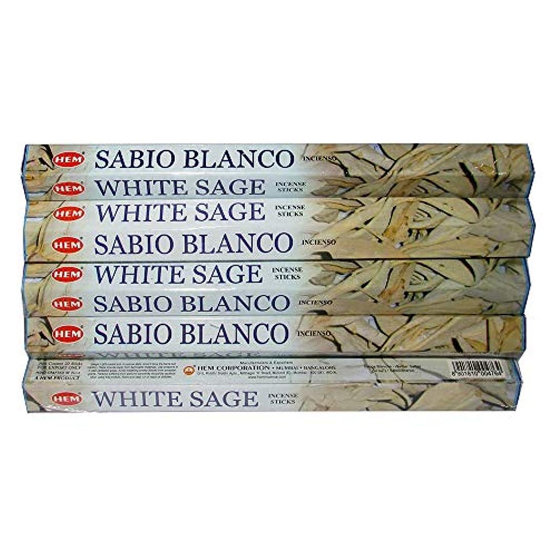 住居簡単にしがみつくHemホワイトセージ100 Incense Sticks (5パックの20 Sticks)