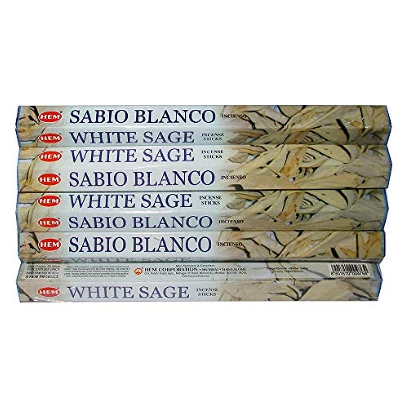 ミシン目代理人盟主Hemホワイトセージ100 Incense Sticks (5パックの20 Sticks)