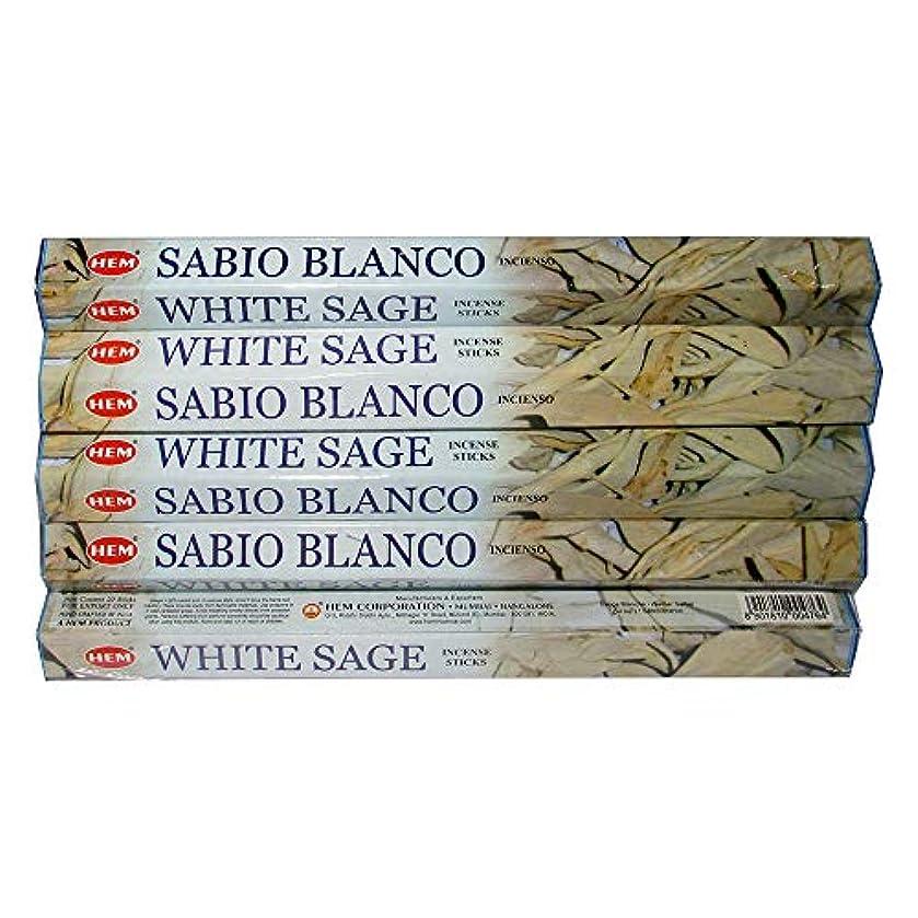 自体輝くロビーHemホワイトセージ100 Incense Sticks (5パックの20 Sticks)